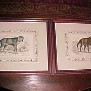Pair of Wolf Engravings Lizar's Natural History 1812