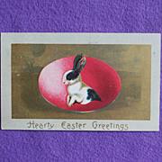 Antique RABBIT WITH EGG Easter Estate Postcard
