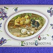 Signed JOHN WINSCH Easter Chicks Antique Victorian Estate Postcard