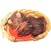 Miniature Brown Kitty in a basket for Doll house Free P&I US Buyers