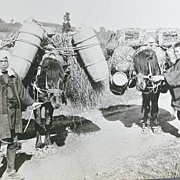 Photo Series of Japanese Farmers .