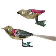 Pair of Glass Birds Christmas Clip On Ornaments