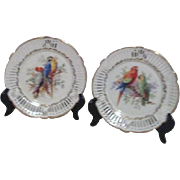 Pair of Schrvarzenhammer Bavarian Transfer Plates with Parrots