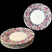 Crown Staffordshire cake salad plates Pattern Springtime six