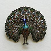 SALE Art Deco Enameled Paste Peacock Sterling Brooch