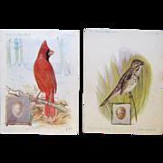 """American Singer Series"" Vintage Trade Cards show Bird Drawings by J.L. Ridgway"