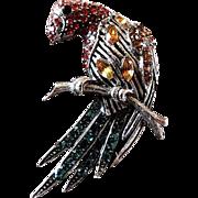 SALE Swarovski Crystal PARROT CLIP ~ Fur Or Dress Clip ~ 10KT White Gold With ...