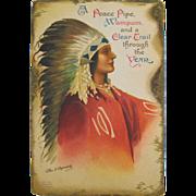 Native American Ellen Clapsaddle Embossed Postcard