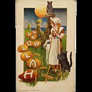 Schmucker Halloween Postcard Milk Maid In Pumpkin Patch With Cat And Owl