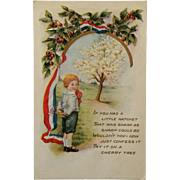 Patriotic Postcard- Little Boy With Cherry Tree