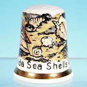 Vintage Collectible Souvenir FINSBURY Bone China Thimble FLORIDA SEA SHELLS