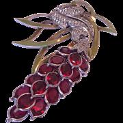 PENNINO fantastic hugeenamel graoe vine pin brooch flower