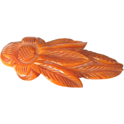 """!930 French """"Cicada"""" Carved  Bakelite Clip Pin"""