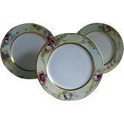 Jean Pouyat Limoges Set of Three Plates, Artist Signed, E A Zimmerman, Dated 1905