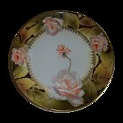 Royal Rudolstadt  Beautiful Rose Plate  Prussia 1905-1932