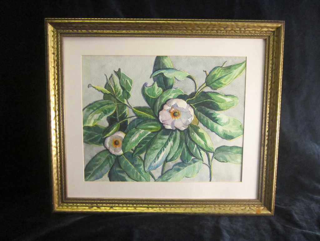 A Vintage American Watercolor of Magnolia Blossoms