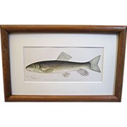 A Pair of Denton Fish Lithographs
