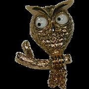 SALE Iconic Avon Google Eye Owl Brooch Pin