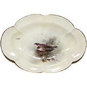 Royal Worcester Oval Dish Decorated With A Sand-Martin By James Stinton 1913