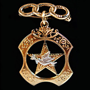 Peace Officer Shield Broch Pin - 10K Yellow Gold & Sterling Silver