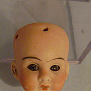 Vintage Bisque Two Inch Doll Head