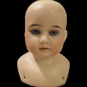 Antique German Bisque Doll Shoulder Head