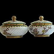 Cloisonne' Pair of Floral Jars with Lid