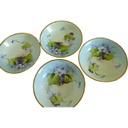 Vintage Saxony Desert Bowls set of 4 hand painted