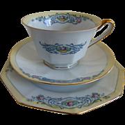 PT Bavaria Beaumont by TIRSCHENREUTH Handpainted tea cup trio set of 2 c1969