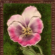 Pansy Postcard with Velvet and Embossing