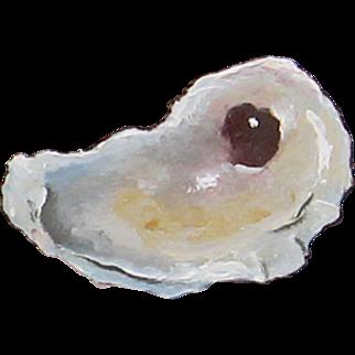 Jocelyn's Oyster Shell