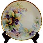 Hand Painted Bavaria 9 Inch Plate Rosenthal Mark Berries
