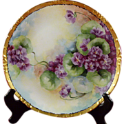SOLD Hand Painted Bavaria 9 Inch Plate Rosenthal Mark Purple Flowers