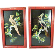 Vintage Pair of Feather Art Framed Bird Pictures
