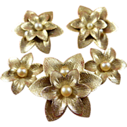 Vintage Sarah Coventry Pin and Clip Earrings