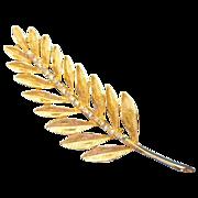 Wonderful gold tone Fern pin with Aurora Borealis rhinestones brooch