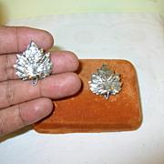 Vintage Napier Sterling Earrings Leaf Design