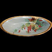 Kuno Steinmann Porcelain Hand Painted Thumb Handle Celery Dish