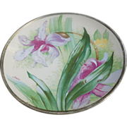 O & G Royal Austria Porcelain Hand Painted Plate