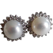 14K Gorgeous 1950-60's Akoya Diamond Halo Earrings