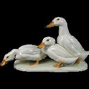 Vintage German Hutschenreuther Porcelain Group of White Ducks