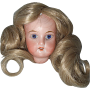 Recknagel Bisque Head and Wig