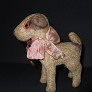 Miniature German Dog