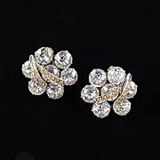 Weiss Dentelle Rhinestone Earrings
