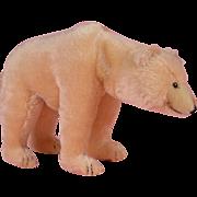 SALE Steiff Polar Bear with Moveable head 1931 Replica