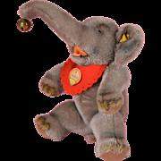 SALE Steiff Mohair Jumbo Elephant - 11 Inches