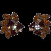 SALE Sophisticated Bold Amber Spray Rhinestone Clip Earrings