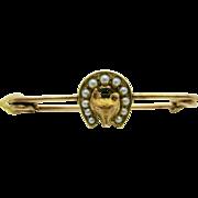 9k  Gold   ~ FOX SEED PEARL  BAR PIN  ~   Victorian Brooch