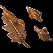 Vintage Coro Brushed & Textured Gold tone Leaf Brooch & Earrings Set