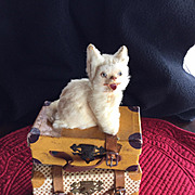 SOLD A Darling Antique Kitty For Your Doll